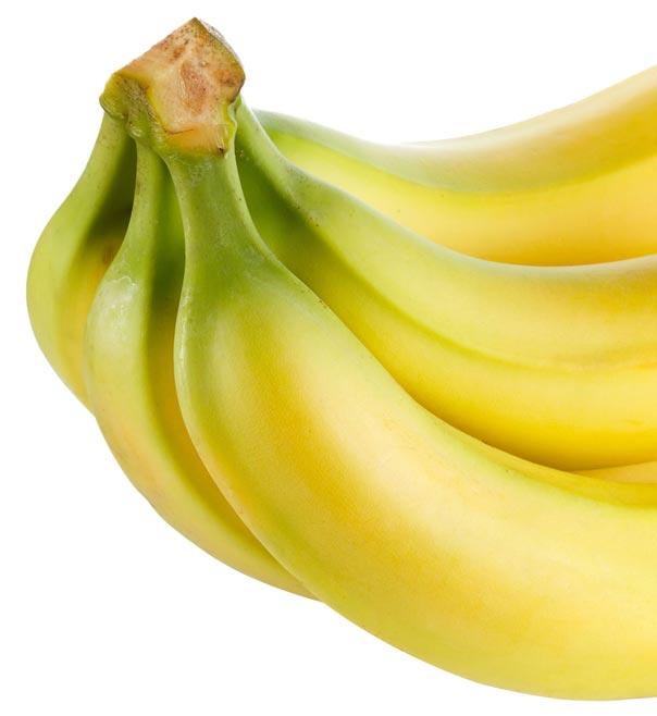Banano de las Fincas Productoras de Banano en Colombia | Servicios Administrativos Bananeros SAB S.A.S